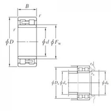 300 mm x 420 mm x 118 mm  KOYO NNU4960 cylindrical roller bearings