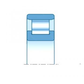35,000 mm x 80,000 mm x 21,000 mm  NTN N307 cylindrical roller bearings