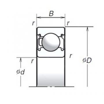17 mm x 35 mm x 10 mm  NSK 6003T1XZZ deep groove ball bearings