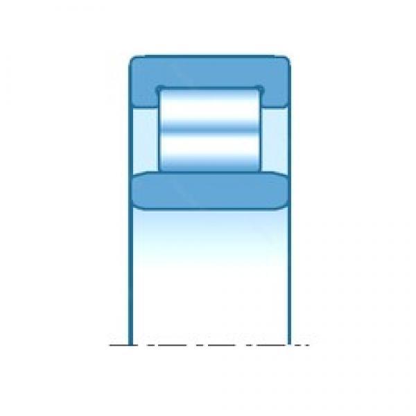 95,000 mm x 170,000 mm x 55,600 mm  NTN NU3219 cylindrical roller bearings #3 image